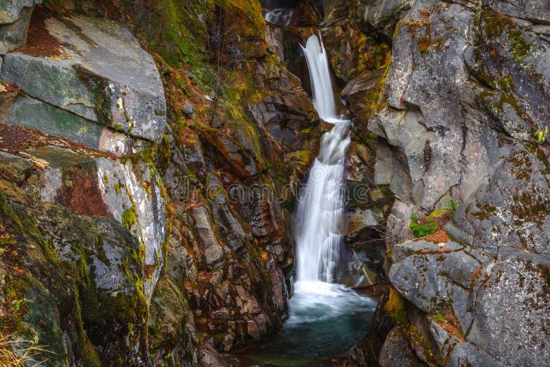 Christine Falls sur Van Trump Creek, Mt Rainier National Park photos libres de droits