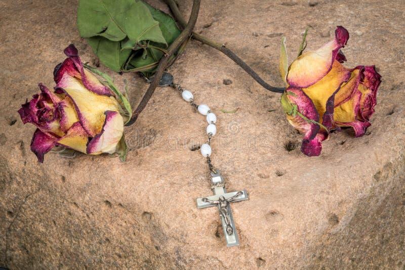 Rose aus einem wiedergeborenen christen
