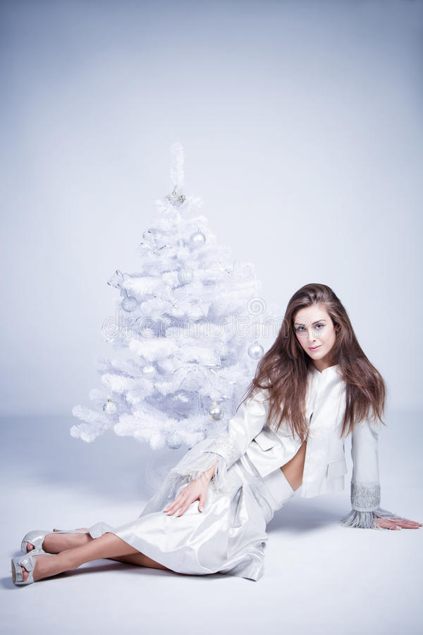 Download Christmas stock photo. Image of clothes, elegant, christmas - 27897066