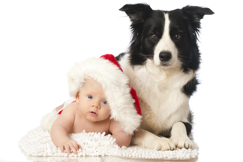 Christmas baby with dog. Isolated on white royalty free stock photo