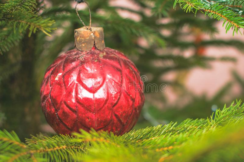 Christmas background - baubles and branch of spruce tree royalty free stock images