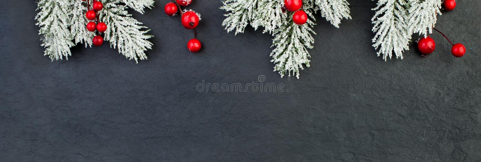Christmas background border made of fir tree branches and red berries on black background.  stock images
