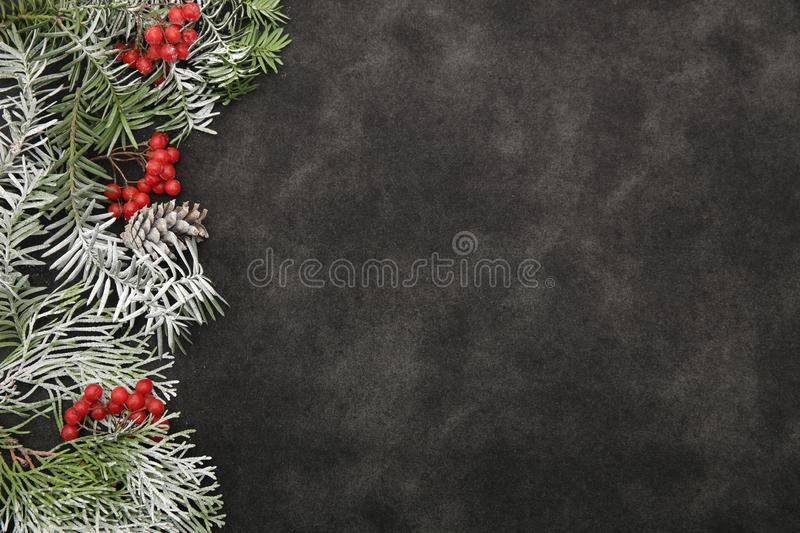 Christmas background composition. Winter ornament. Branch Spruce with snow and red berries and cones on a black background stock photo