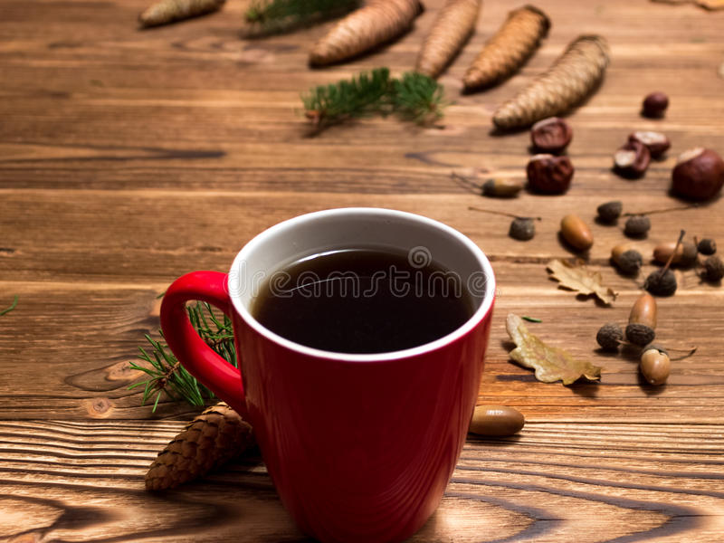 Christmas background with fir branches and cones stock photos