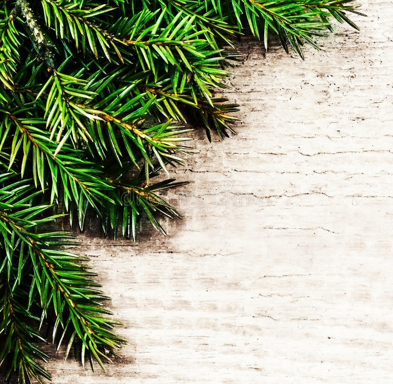 Christmas Background With Fir Twigs. Christmas Rustic Background ...