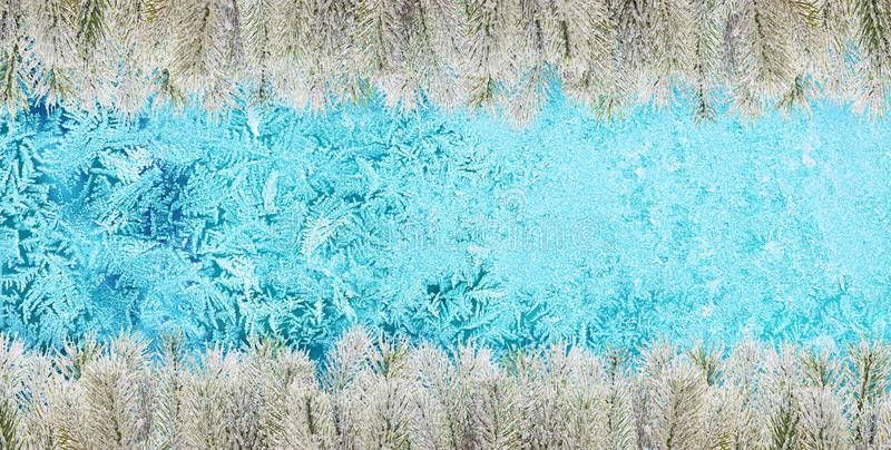 Christmas background. Frozen window glass, snowy fir branch and frost.  stock photos