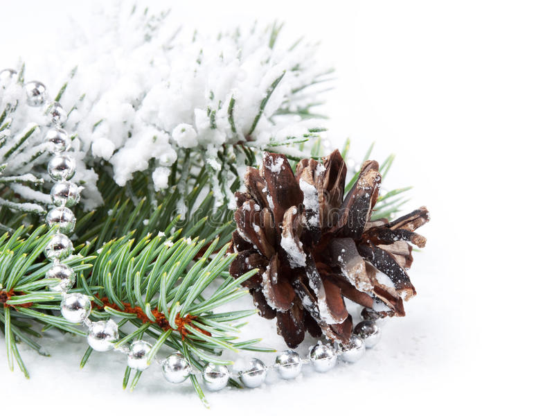 Christmas Background With Pine Cone Royalty Free Stock Photos
