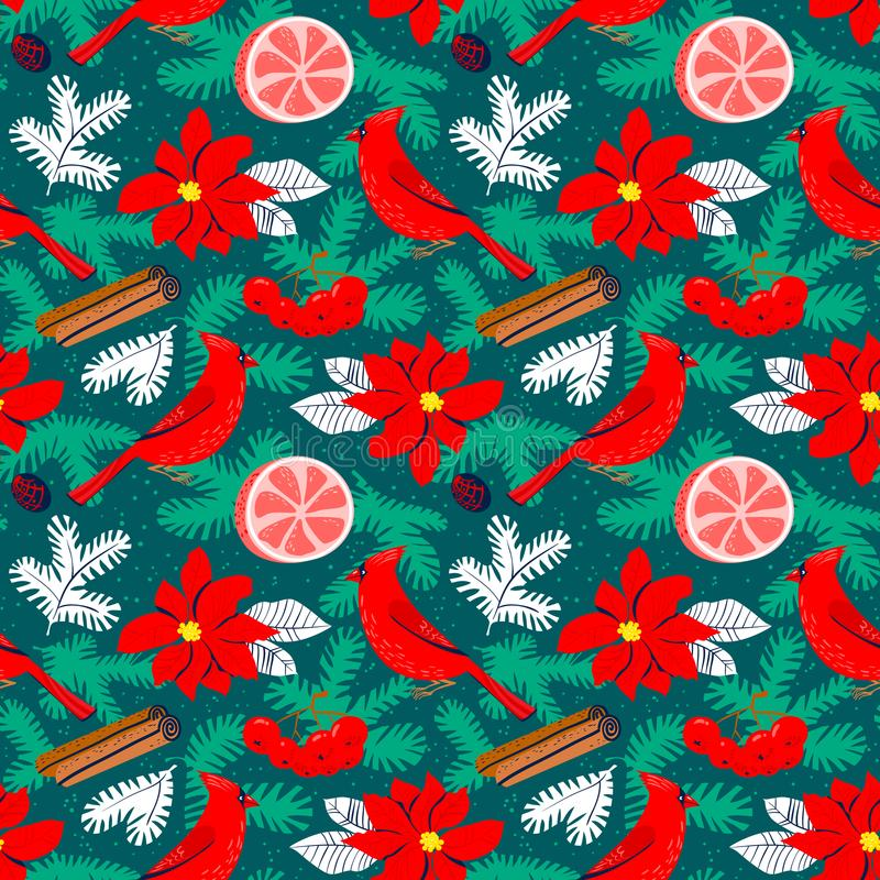 Christmas background with poinsettia red flower. Winter floral s. Eamless pattern with cardinal bird, grapefruit, canella, pine tree branches. Seasonal design royalty free illustration