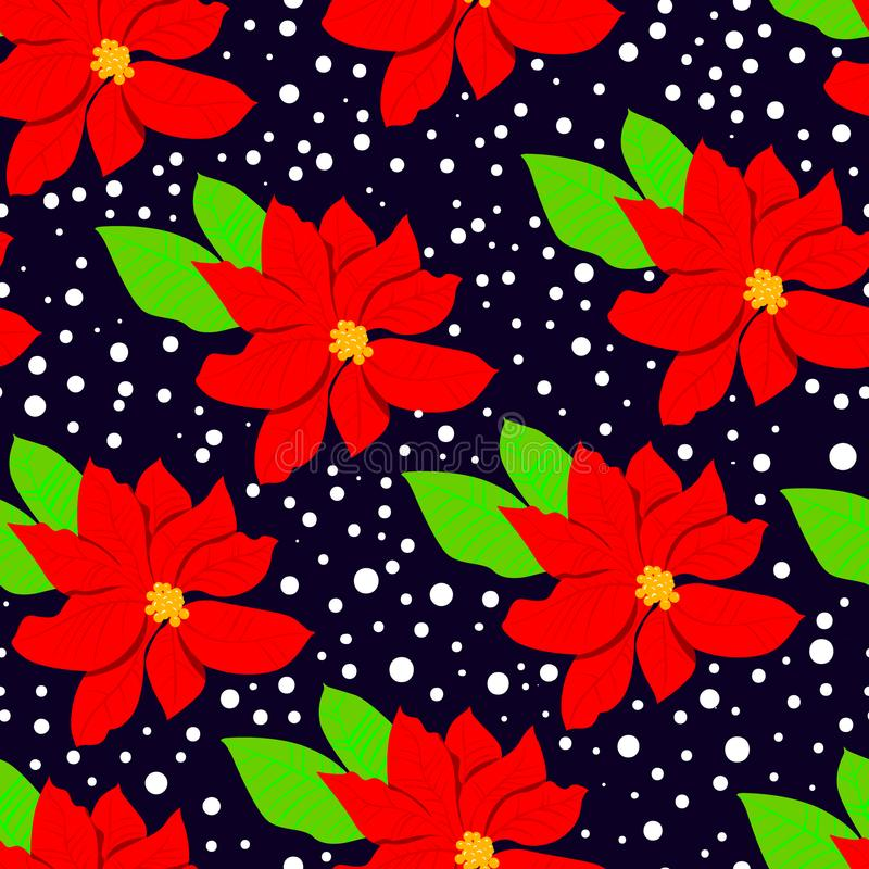 Winter floral seasmless pattern with poinsettia and leaves. Christmas background with poinsettia red flower. Winter floral seamless pattern with blossoming and vector illustration