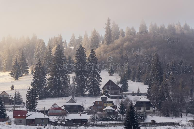Christmas background of snowy winter landscape with snow or hoarfrost covered fir trees and copy space - winter magic holiday stock photo