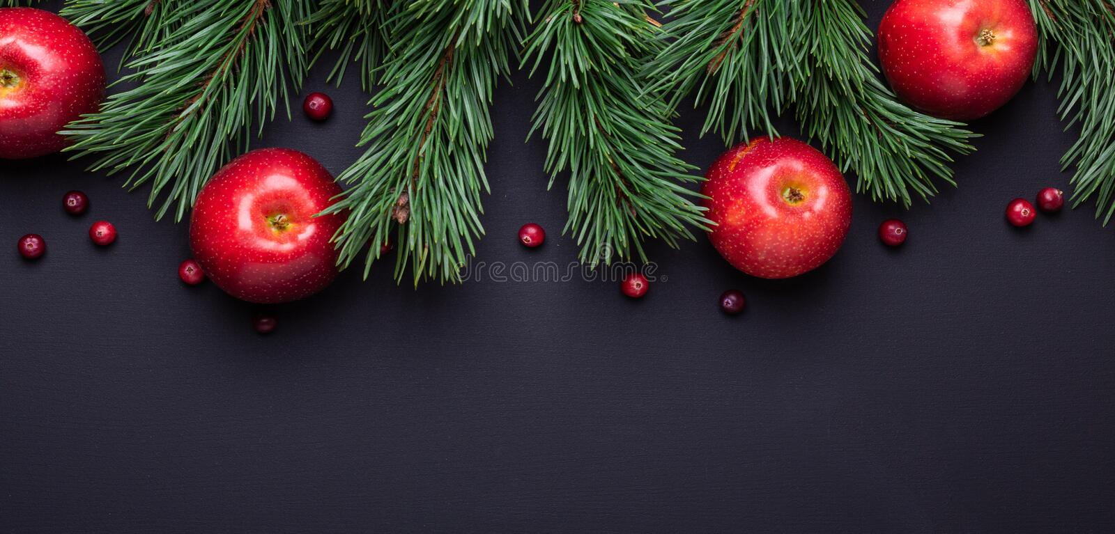 Christmas background with tree branches, red apples and cranberries. Dark wooden table stock photos