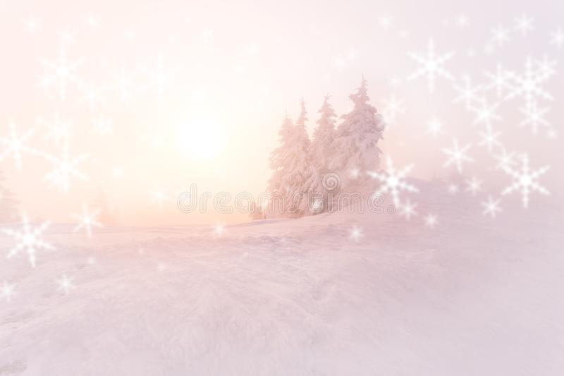 Christmas background with winter landscape in the mountains during sunrise/ Beautiful sunrise light. Christmas card royalty free stock image