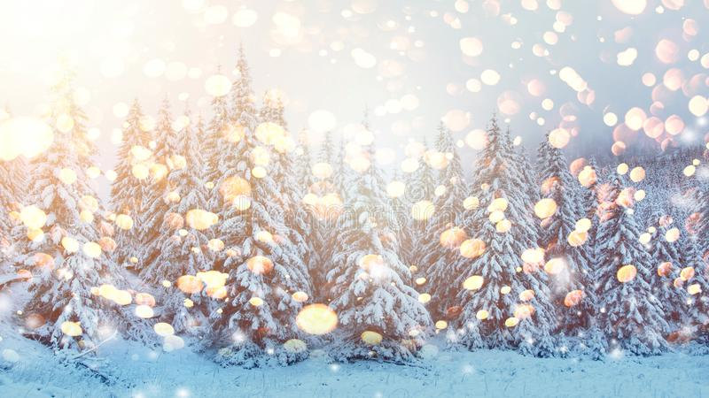 Christmas background. Winter scene with bright glowing snowflakes. Snowy forest royalty free stock photography