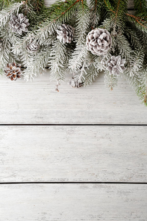 Christmas backgrouns with spruce and snow. Top view stock images