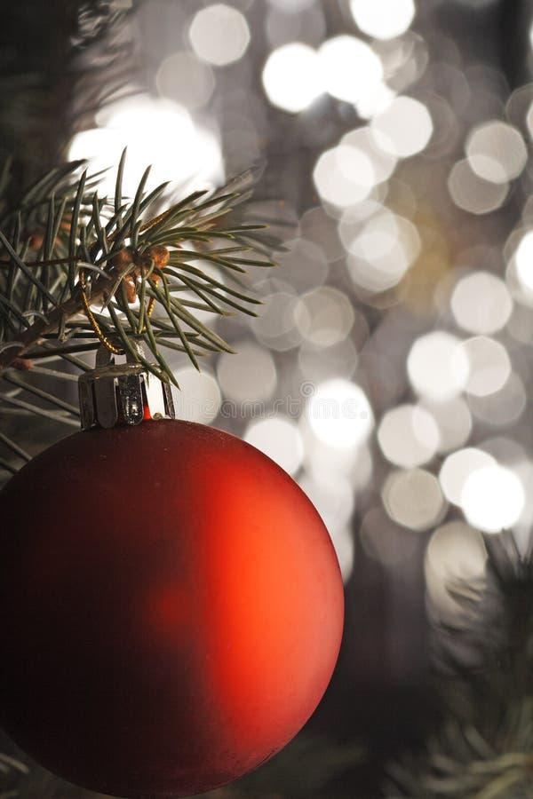 Christmas ball. On christmas tree royalty free stock photography
