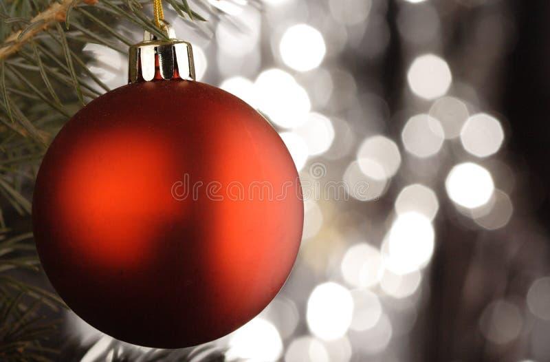 Christmas ball. On christmas tree stock photos