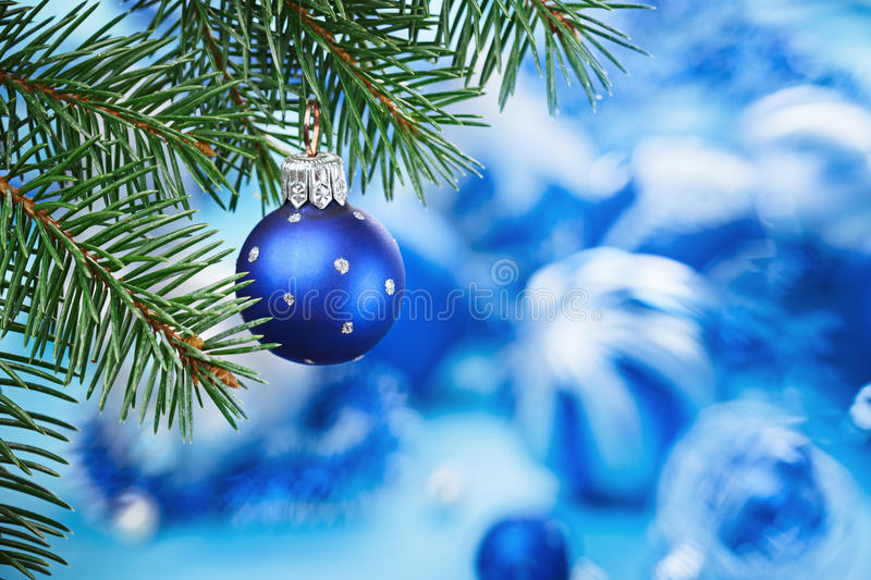 Christmas Ball On Blue Spruce Branch Stock Image