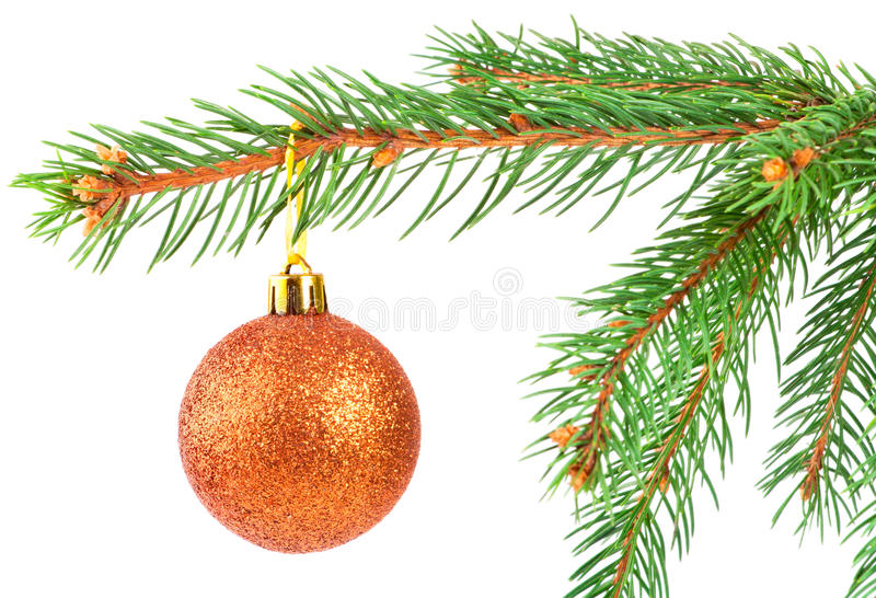 Download Christmas Ball On A Fir Tree Branch Stock Photo - Image of gold, glass: 16809192