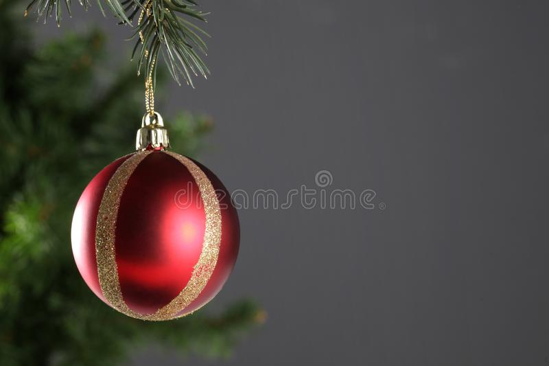 Christmas ball hanged on a christmas tree branch with copy space on grey background royalty free stock photography