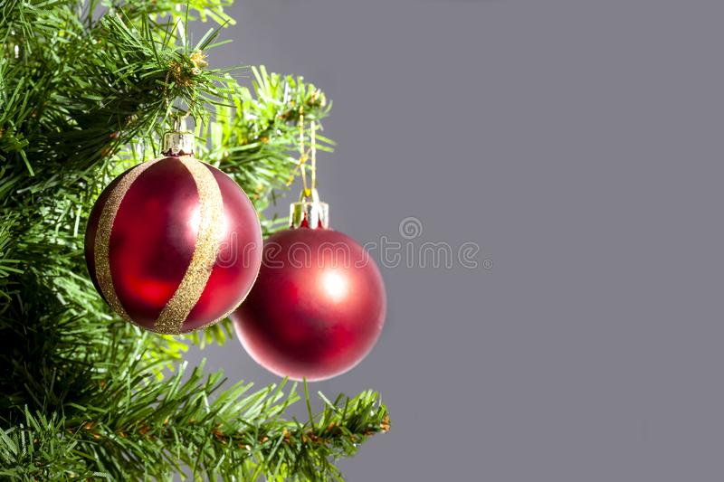 Christmas ball hanged on a christmas tree branch with copy space on grey background royalty free stock image