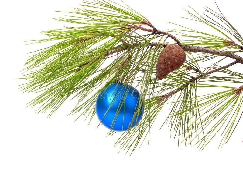 Download Christmas Ball On Pine Branch Stock Photo - Image: 10750776