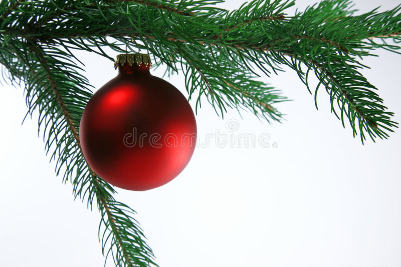 Download Christmas Ball On Tree, White Background Stock Photo - Image: 1382808