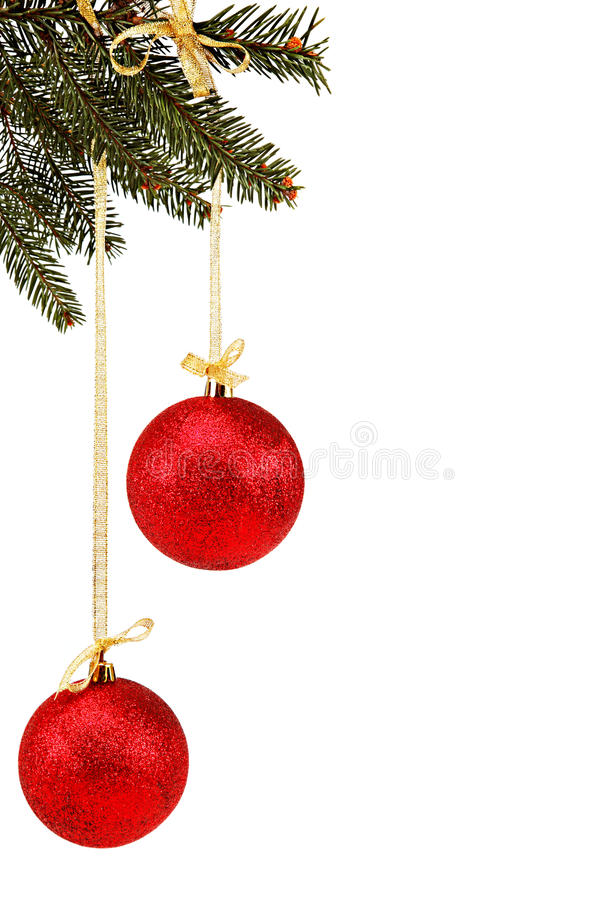 Christmas balls on fir branch. royalty free stock photography