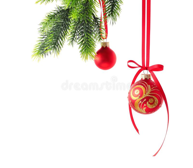 Christmas balls hanging on fir-tree branch against white background royalty free stock photography