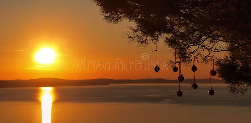 Christmas balls at sunset on sea. Christmas balls hanging on pine tree in golden orange sunset on Adriatic sea. Horizontal color photo royalty free stock image