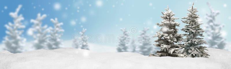 Christmas banner panorama background stock photos
