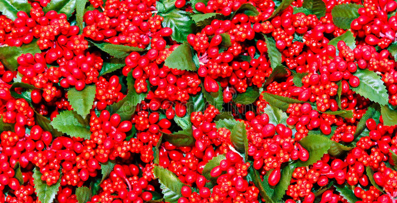 Christmas berry texture royalty free stock photo