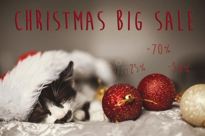 Christmas big sale text. Holiday discount offer. Cute kitty sleeping in santa hat on bed with gold and red christmas baubles in f. Estive room. Shopping and stock images