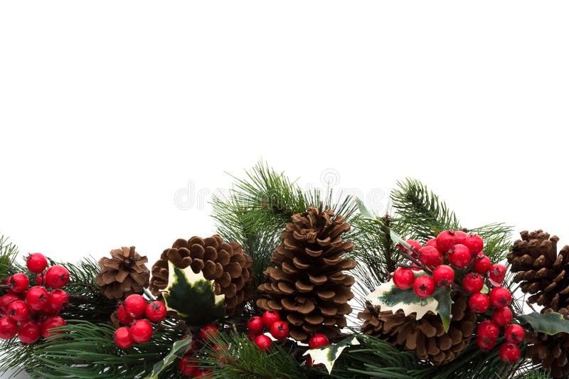 Christmas Border. Pine cones and holly berries on bough with white background, winter border royalty free stock images