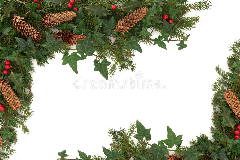 Download Christmas Border stock image. Image of fauna, spruce - 21219909