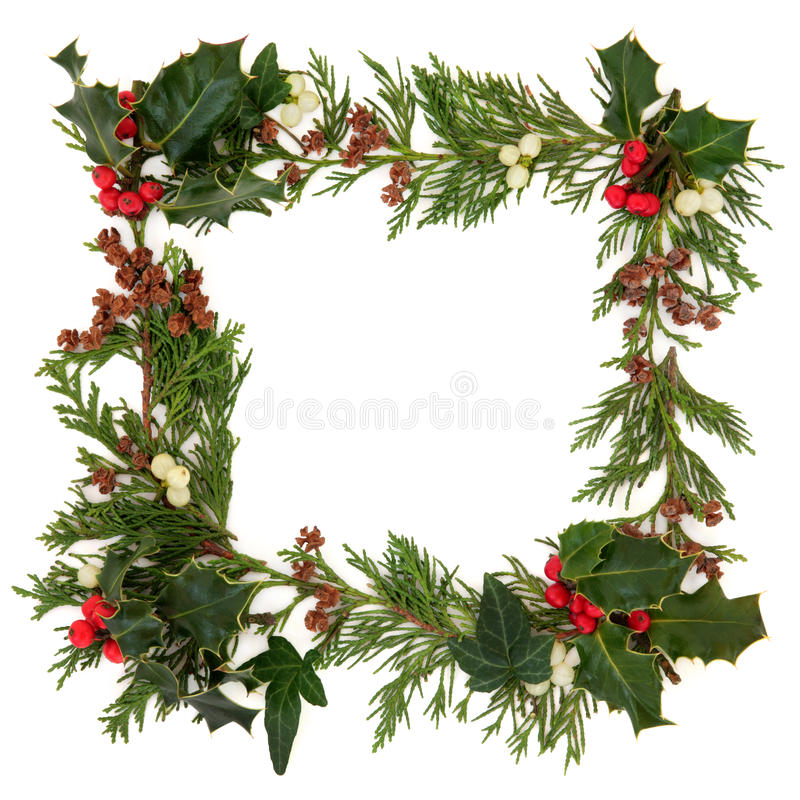 Christmas Border. Christmas decorative border of holly, ivy mistletoe and cedar leaf sprigs with pine cones over white background royalty free stock photo