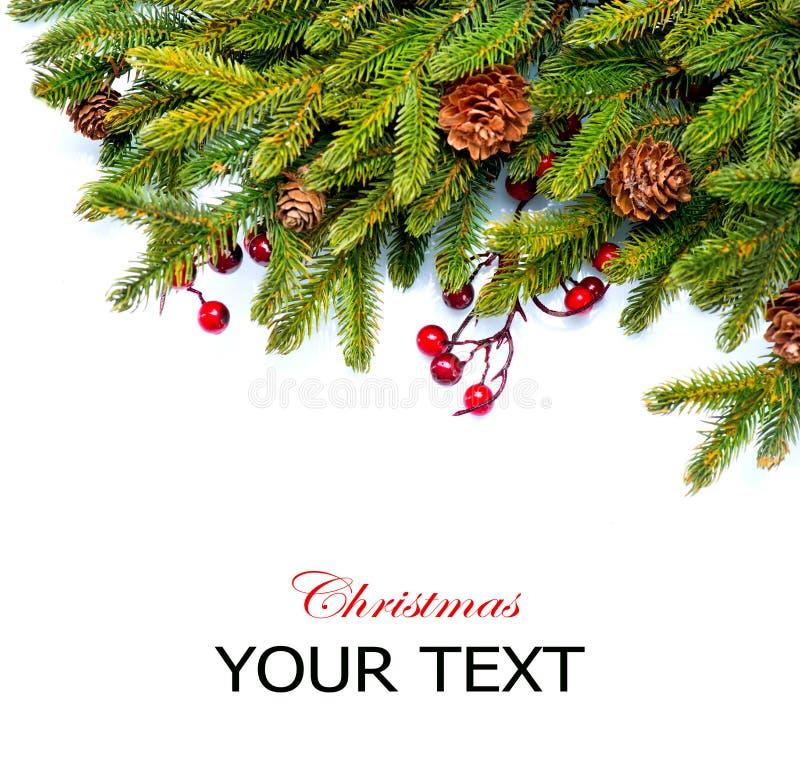 Christmas Border Design. Christmas. Evergreen Fir tree Border Design royalty free stock photo