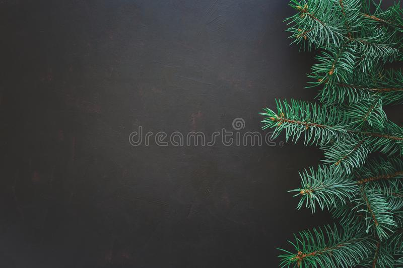 Christmas Border. Fir tree branches on dark wooden background. Top view. Copy space. royalty free stock photo
