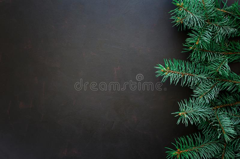 Christmas Border. Fir tree branches on dark wooden background royalty free stock photo
