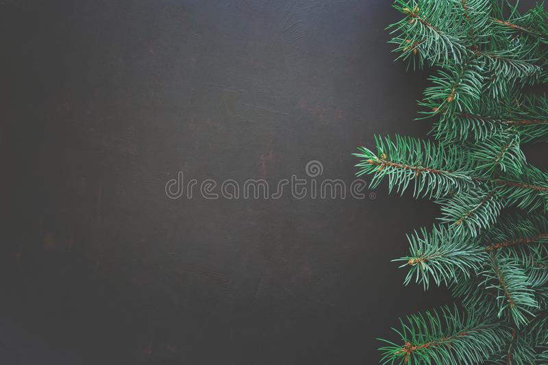 Christmas Border. Fir tree branches on dark wooden background. Top view. Copy space. stock photography