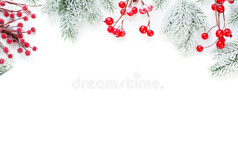 Christmas border of red holly berries and snowy green fir branch isolated on white background.  stock images