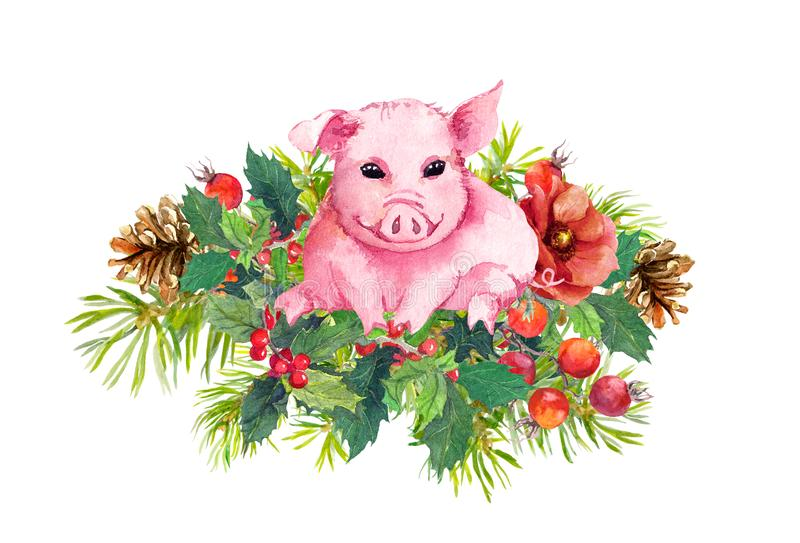 Christmas bouquet - cute pig, winter flowers, christmas tree branches, mistletoe. Watercolor royalty free illustration