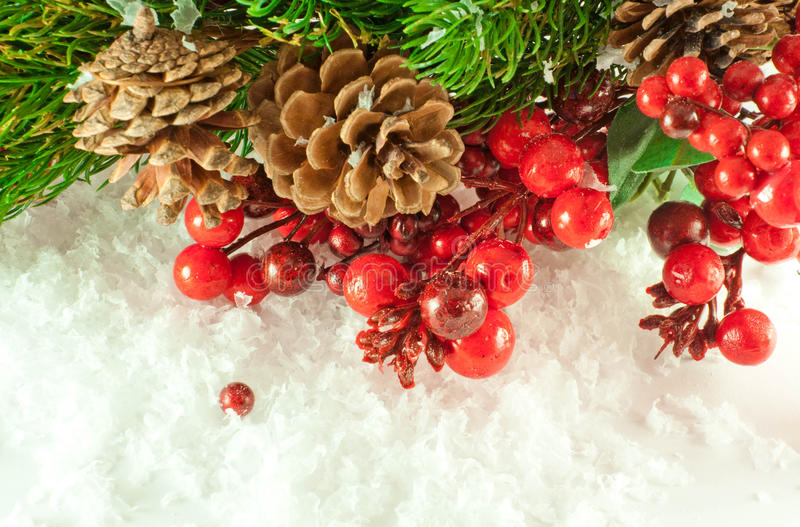 Christmas branch of berries with a fur-tre stock photo