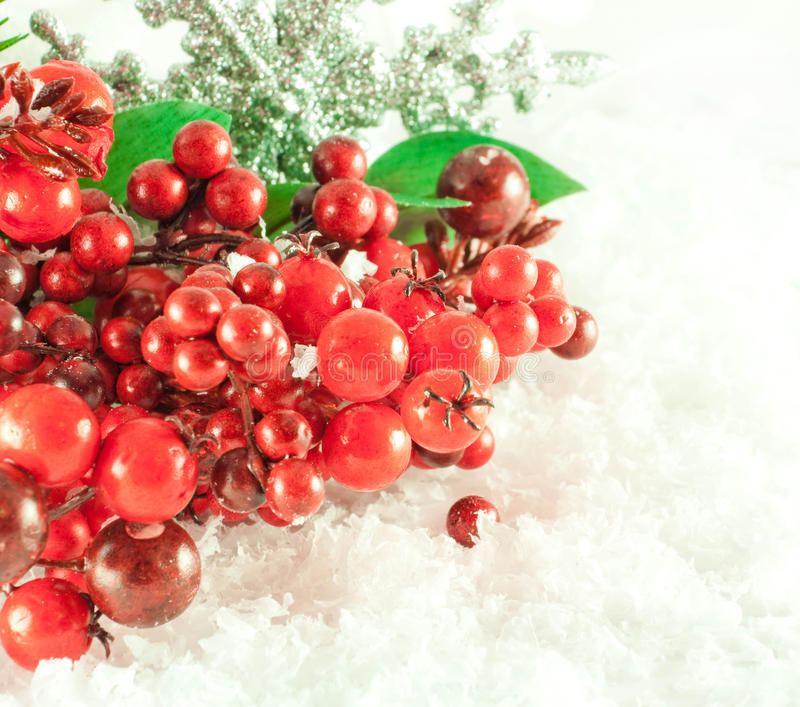Download Christmas Branch Of Berries With A Silver Stock Image - Image: 22121607