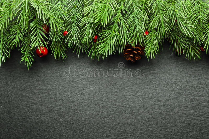 Christmas branches background royalty free stock image