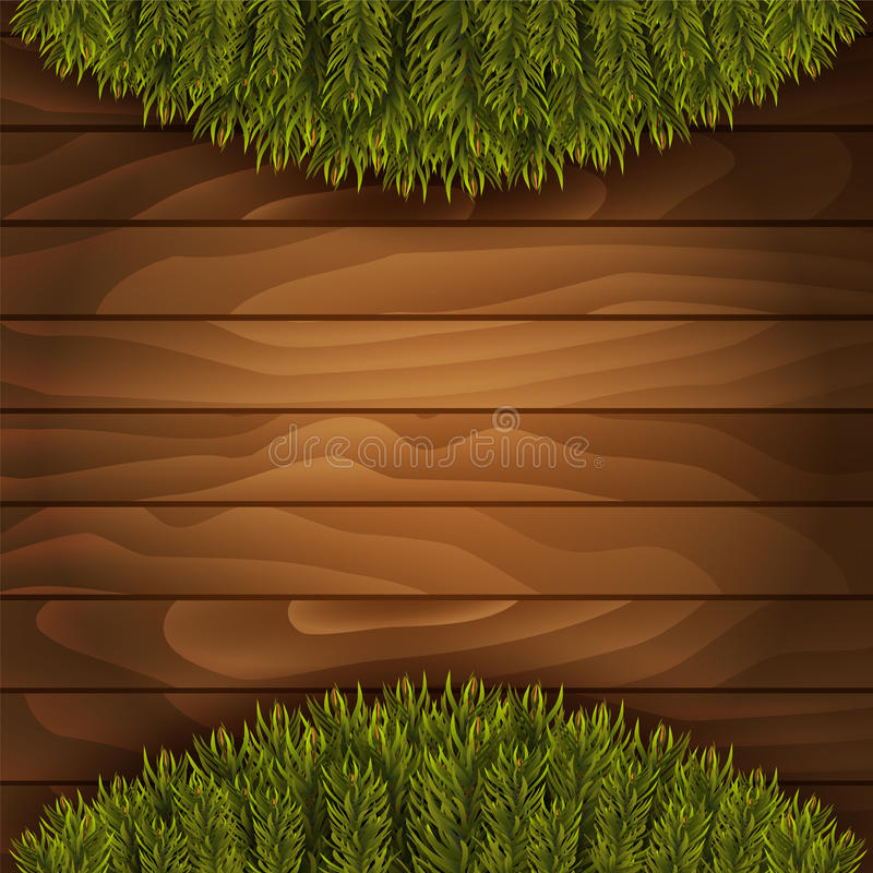 Christmas branches on wooden background. Vector illustration vector illustration