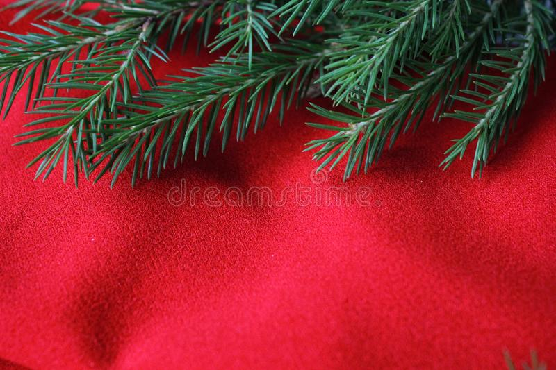 Christmas card background. New year holiday. Christmas still life. The view from the top. Free space for text. Green pine branches. On a red background royalty free stock photography