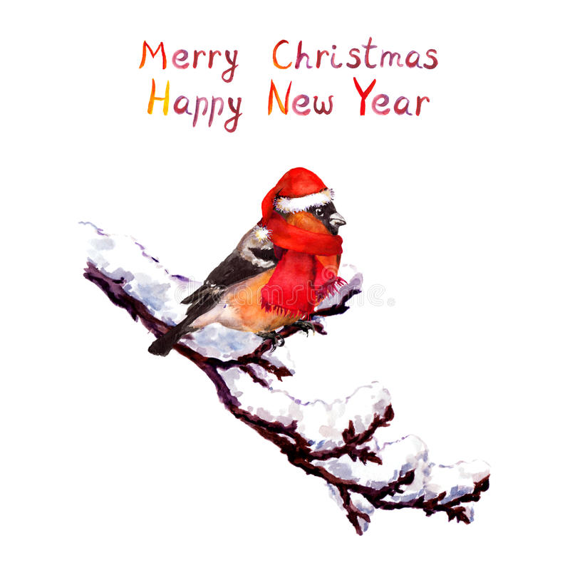 Christmas card - bird in red hat at branch with snow. Watercolor royalty free illustration