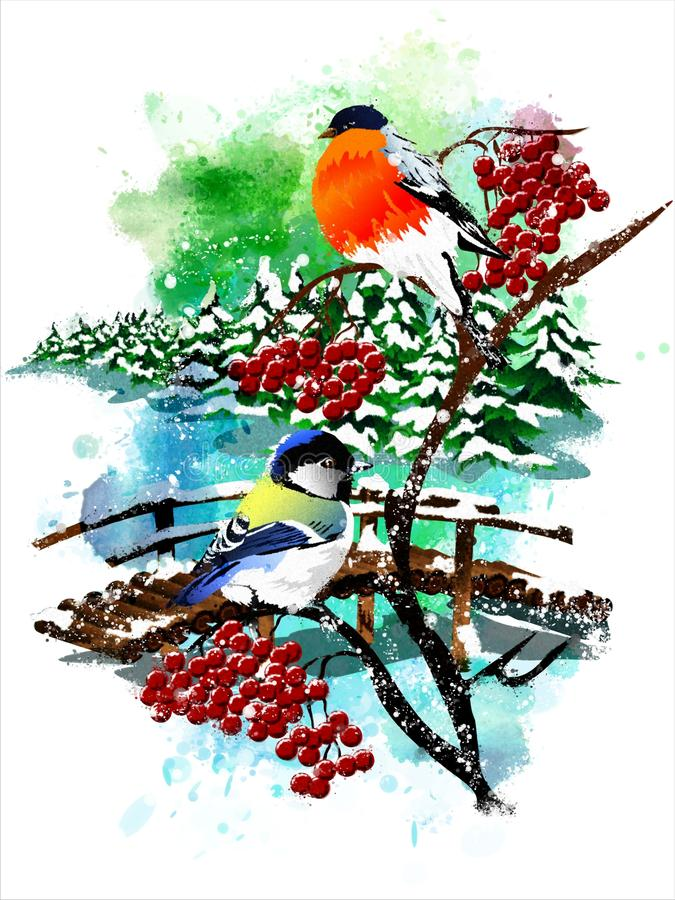 Christmas card with a bullfinch and a tit on a mountain ash. royalty free illustration