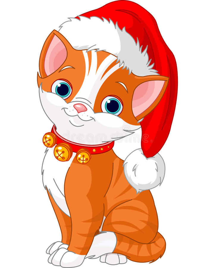 Christmas cat. With Santa's hat