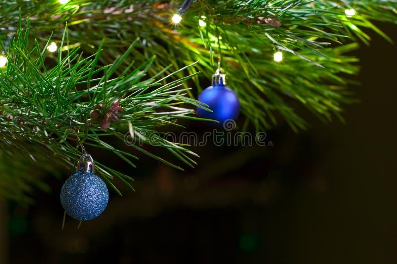 christmas close depth field shallow tree up στοκ εικόνες
